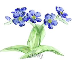 NEW NIB Swarovski Crystal Figurine Forget-me-not Blue Flower Spring 5374947 $489