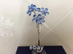 Swarovski Flower Dreams Forget-me-not, Large 5490754 (bnib/retired)