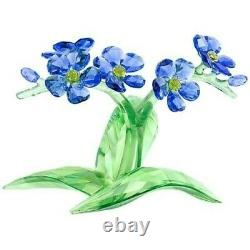 Swarovski Forget-me-not Flower 5374947 Crystal Flowers Bnib