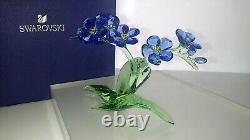 Swarovski Paradise Blume Vergiss Mein Nicht Forget Me Not 5374947 Neu
