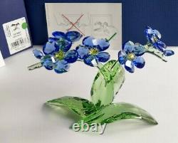 Swarovski Paradise Blumen Vergiss Mein Nicht Forget Me Not 5374947 NEU OVP MIB